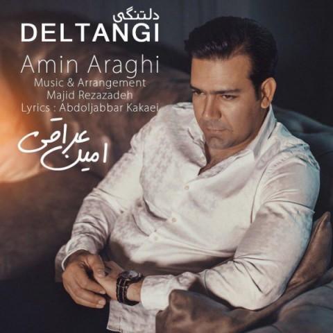 دانلود موزیک جدید امین عراقی دلتنگی
