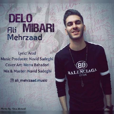 دانلود موزیک جدید علی مهرزاد دلو میبری