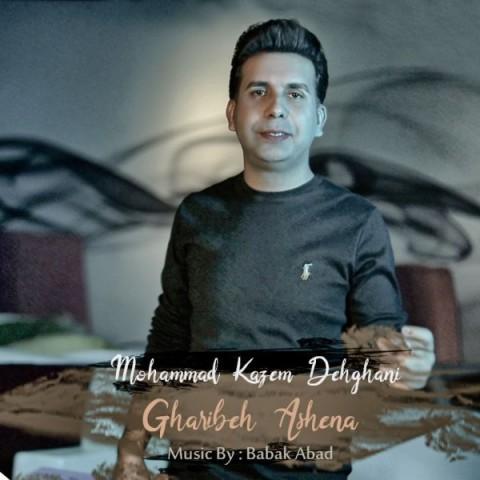 دانلود موزیک جدید محمد کاظم دهقانی غریبه آشنا